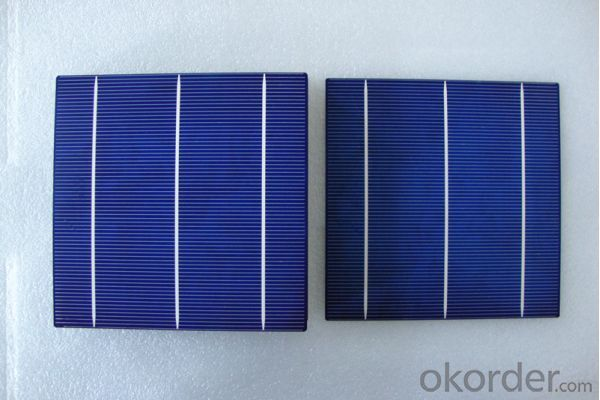 4.48W 3 BB A Grade Poly Solar Cell156mm with18.4-18.5% Efficiency approved by CE TUV