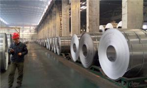 Alloy 3003 Aluminum Roll Stock 3mm Aluminum Coil Roll