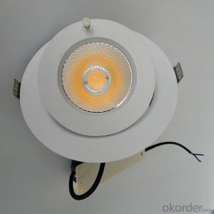 led trunk lamp led cob downlight 20W 30w for 3 years warranty