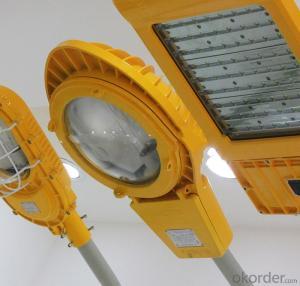 BD Series LED Anti-Explosion Street Light 100W