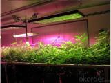 LED Grow Light Full Spectrum LED Hydro Plant Growth Lamp Panel 300W LED Grow Light