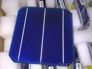 Mono Solar Cells156mm*156mm in Bulk Quantity Low Price Stock 19.6