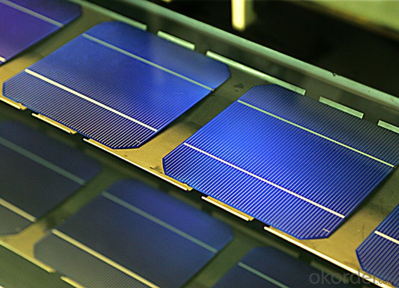 Mono Solar Cells156mm*156mm in Bulk Quantity Low Price Stock 19.2