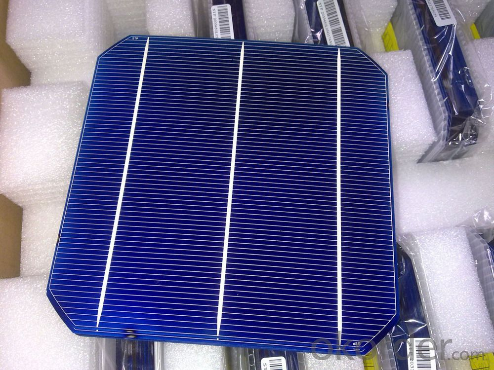 Mono Solar Cells156mm*156mm in Bulk Quantity Low Price Stock 19.4