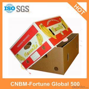 Printed Cartons Custom Made China Manufacturer