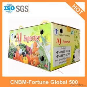 Printed Logo Cartons Custom Design Made in China