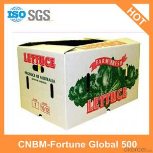 Printed Logo Cartons Custom Design Made in China