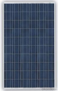 TPB156×156-60-P 260Wp Poly Silicon Solar Module