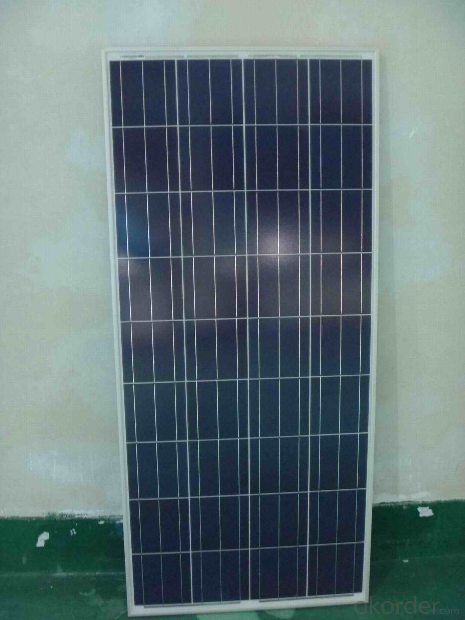 295W Poly Crystalline Solar Panel for Sale