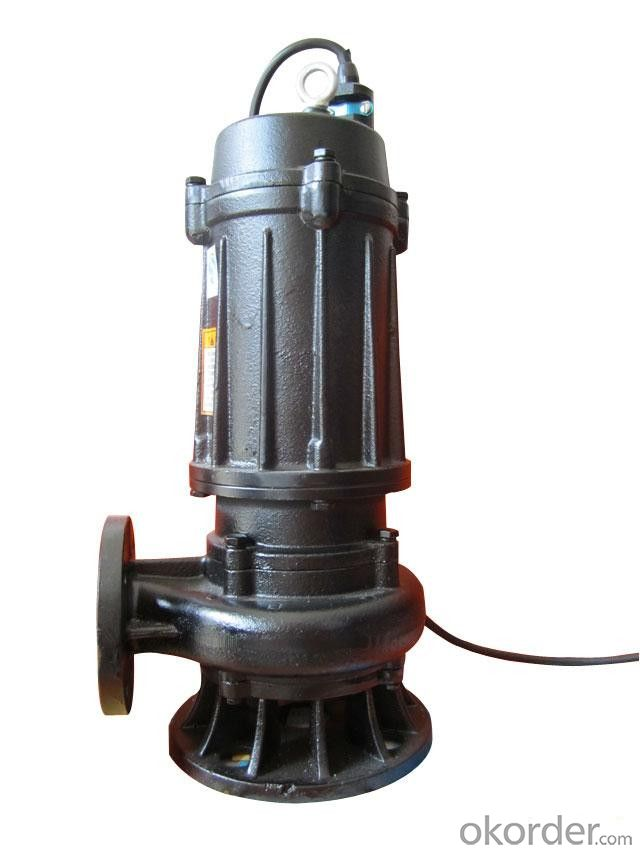 Submersible Sewage Pump in Water to Priming