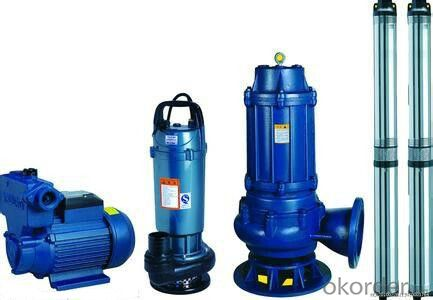 WQ Series Pond Sewage Pump with Competitive Price