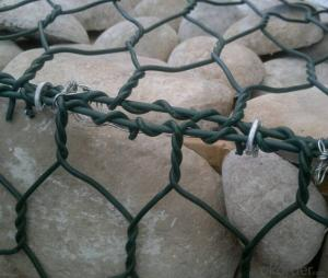 PVC Coated Gabion Box/Hexagonal Wire Mesh Hot Sale Superior Quality
