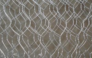 Gabion Wire Mesh with Gi/PVC Coated (High Quality)