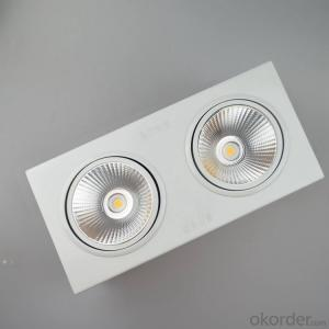 double-headed cob led grill light 2*10w with ce rohs Certification