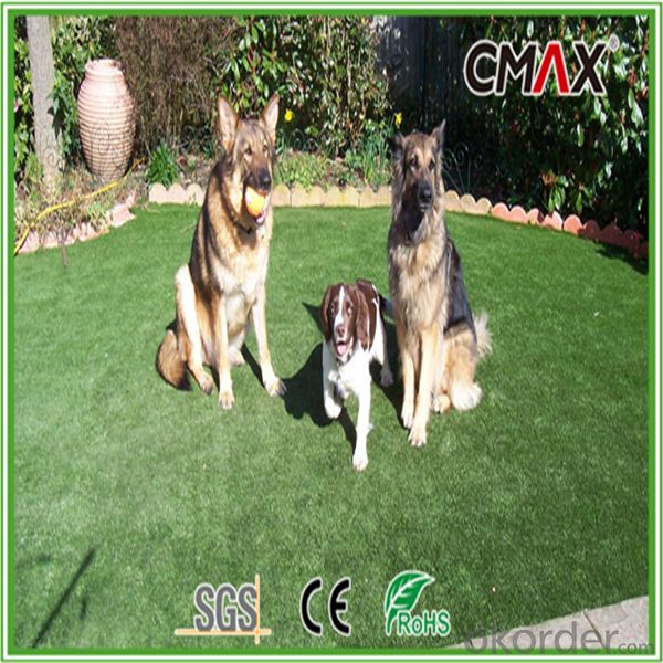 20mm Pet Grass with 3 Colors,1100Dtex with Environment Friendly