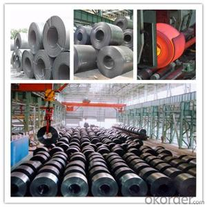 Hot Rolled Carbon Steel Coil 235 Q195 Ss400 A36 Made in China