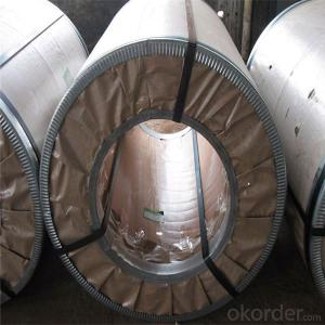 Cold Rolled/Hot Dipped Galvanized Steel Coil/ Chinese Supplier