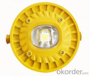 Mining Explosion Proof LED Roadway Lights (C)