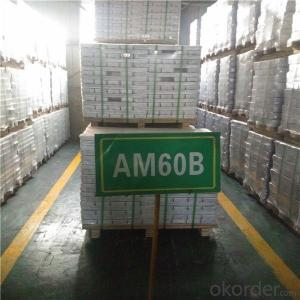 Magnesium Alloy Ingot for Model Type AM60B for Italy Market
