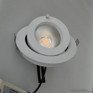 30W Led COB Trunk Lamp use for Retail lighting and Clothing lighting