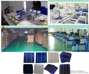 Solar Cell High Quality  A Grade Cell Polyrystalline 5v 17.8%