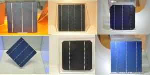 Solar Cell High Quality  A Grade Cell Polyrystalline 5v 17.2%