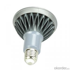 PAR      Light     /     C21PR-EE/C21PR-DE/C21PR-CE
