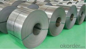 Grade EN10130-DC04 Galvanized Steel in Coil