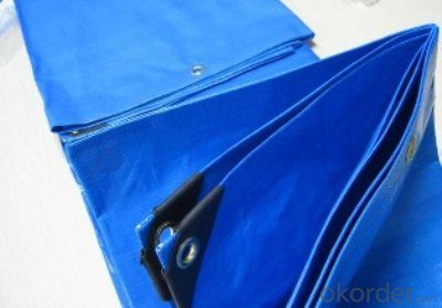 PE Woven Tarpaulin with Sun-Resistant with Competitive Price
