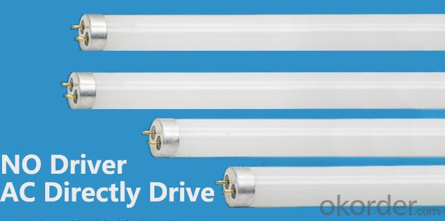 LED T8 Tube 10W 600mm glass tube AC drive