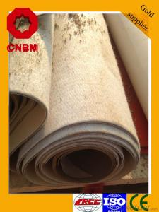Torch-on Spun-bond Polyester Reinforced SBS Waterproof Membrane