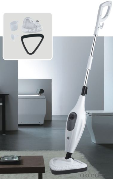 steam mop with single function as shown on TV sale