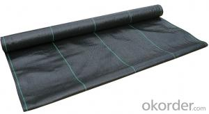 PP Geotextile for Construction/ Landscape Fabric/Weed Barrier