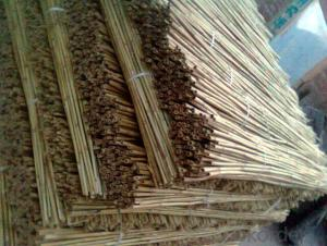 Natural  Reed Screen Gardening Decoration Natural