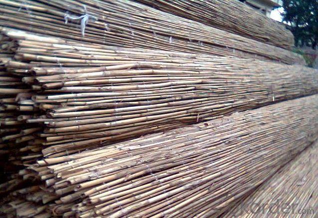 Gardening Reed Decorating Screening Gardening