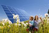 Componente fotovoltaico de silicio policristalino 60W