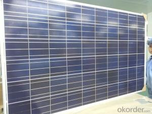 305w Poly Solar Panel For Home Use And Power Plant