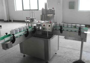 Wrapping Package Type Packing Machine for Packaging Industry