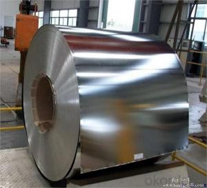 Tin Free Steel and Tinplate for Prime Quality