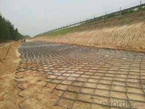 1.25mm Geocell Of Earthwork Products in Road Instruction