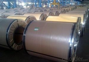 Electric Tinplate coil and sheet for sales