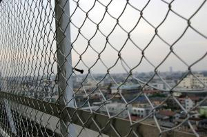 Galvanized or PVC Coated Chain Link Fence In High Quality