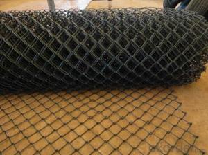 PVC Coated Chain Link Fence/Hot Dipped Galvanized Chain Link Fence