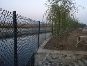 Galvanized Chain Link Fence From Factory in High Quality
