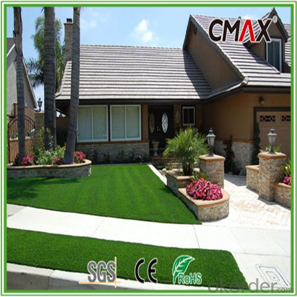 Thick Artificial Grass with W Shape-CGL0046SY