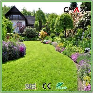 35mm Roof Terrace Garden Artificial Grass PE Curly Yarn Turf