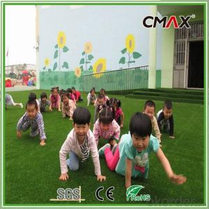 30mm Kindergarten Association Artificial Grass Color Customized Artificial Turf