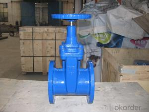 Gate Valve BS5163 with Cap on Cheap Price