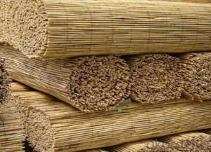Garden Screening Natural Reed Euro for Decoration
