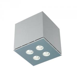 Die-casting aluminum body Ceiling Lighting X-01S